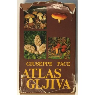GIUSEPPE PACE : ATLAS GLJIVA