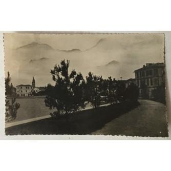 Fažana: stara razglednica borovi uz obalu