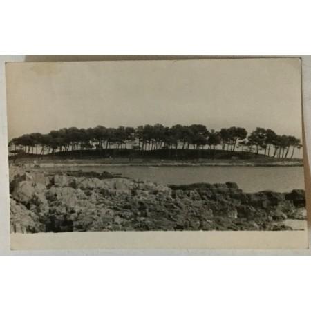 Medulin: stara razglednica borovi i plaža