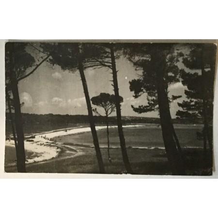 Medulin: stara razglednica plaža iz borovine
