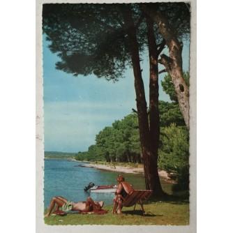 Medulin: stara razglednica uz more pod borom