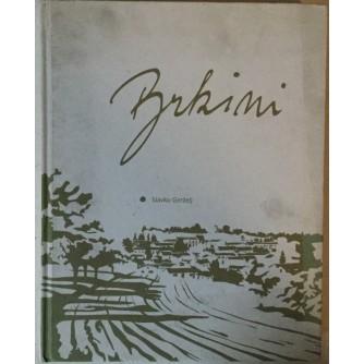 SLAVKO GERŽELJ: BRKINI IN SOSEDNJI KRAJI NA PRELOMU TISOČLETJA/BRKINI AND ITS NEIGHBOURING PARTS AT THE TURN OF THE CENTURY