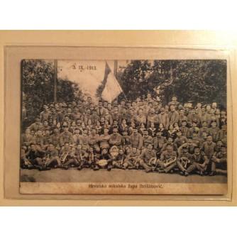 VOĆIN STARA RAZGLEDNICA HRVATSKA SOKOLSKA ŽUPA IBRIŠIMOVIĆ 1913.    R0205