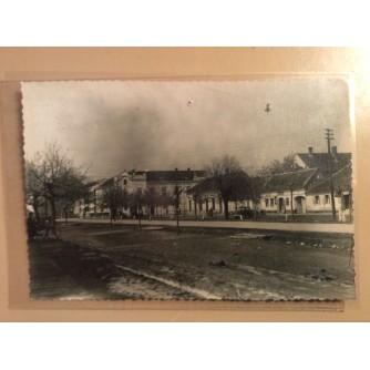ŽUPANJA STARA RAZGLEDNICA ULICA I DRVORED 1960.    R0246