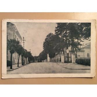 VUKOVAR STARA RAZGLEDNICA ULICA I DRVORED 1948. R0304